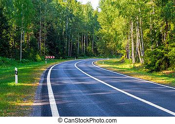zona, pericoloso, turno, foresta, automobile, strada