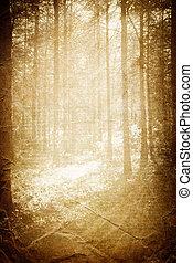 zonlicht, in, de, bos, ouderwetse , achtergrond, met, ruimte, voor, text.