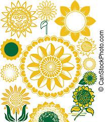 zonnebloem, verzameling