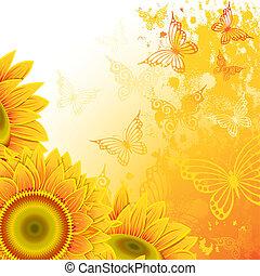 zonnebloemen, achtergrond