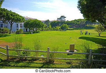 zonnig, hotel, golf dag, cursus