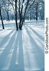 zonnig, winter, dag