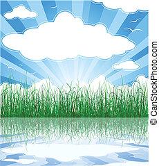 zonnig, zomer, achtergrond, met, gras, water, en, wolken