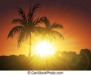 zonsondergang palmen