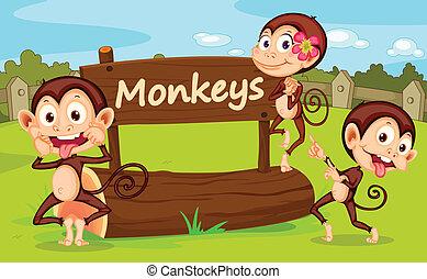 Zoo animal - Illustration of animal enclosure at the zoo