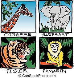 Zoo animals - Youth oriented zoo animals, giraffe, elephant,...