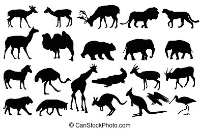 zoo animals silhouettes collection - vector