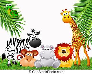 Zoo animals on white background