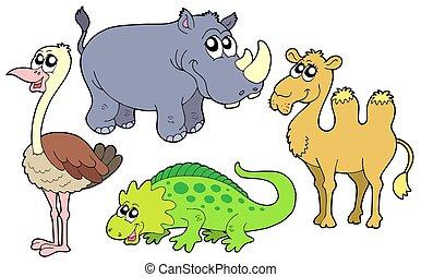 zoo, djuren, kollektion
