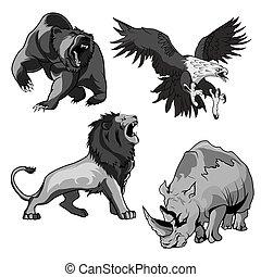 Zoo rhino, hawk, grizzly bear and savannah lion