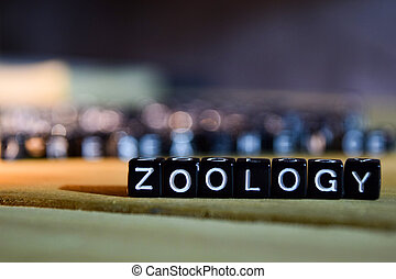 ZOOLOGY concept wooden blocks on the table.