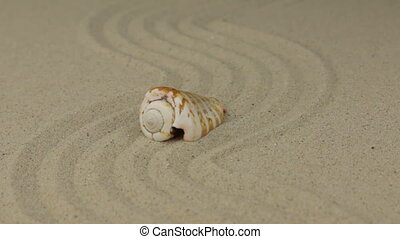 Zoom of a beautiful sea shell lying on a zigzag made of sand.