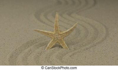 Zoom of a beautiful starfish lying on a zigzag made of sand.