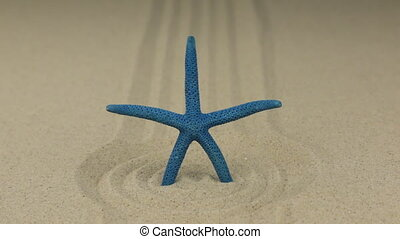 Zoom of a blue starfish standing in a circle of sand.