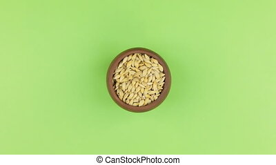 Zoom of a clay pot filled with barley grain. Isolated green screen.
