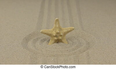 Zoom. Starfish stands in the center of a circle made of sand.