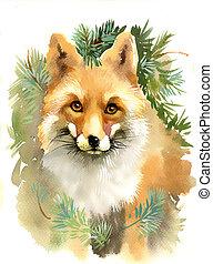 zorro, ramas, retrato