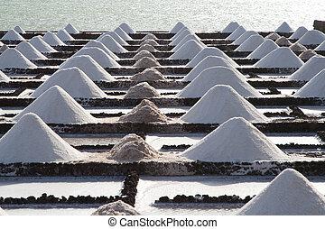 zout, aambeien, op, een, zouthoudend, exploratie