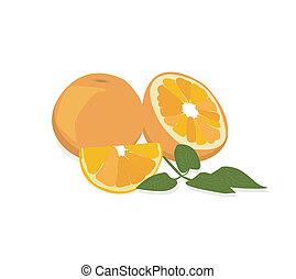 zralý, pomeranč, s, čerstvý, nezkušený, leafs., vector.