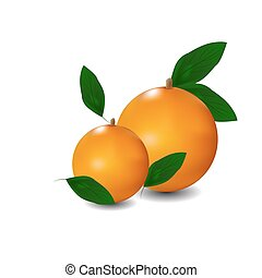 zralý, pomeranč, s, leaves., vektor, ilustrace