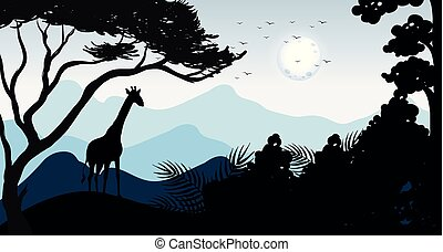 zsiráf, árnykép, erdő, színhely