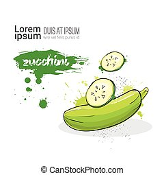 Zucchini Hand Drawn Watercolor Vegetable On White Background...