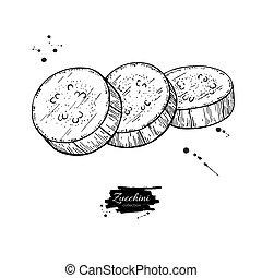 Zucchini slice hand drawn vector illustration. Isolated...