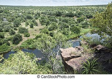 zuid-afrika, park, kruger, safari, nationale