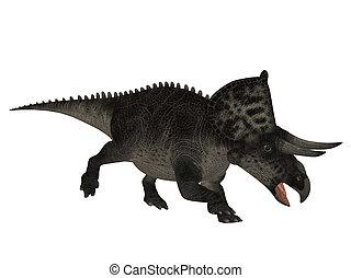 Zuniceratops dinosaur isolated on white background