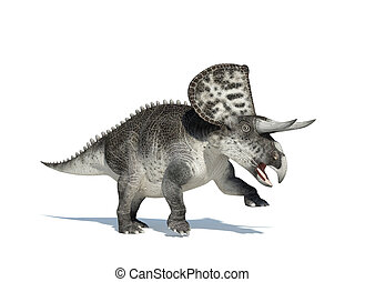 Zuniceratops on white background. With clipping path...