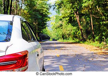 zurück, von, weißes, auto, parken, auf, asphaltstraße