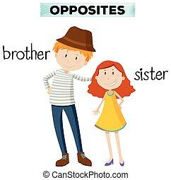 zuster, broer, woorden, tegenoverstaand