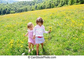 zuster, weide, lente, meiden, bloemen, spelend