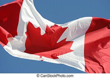 zwaaiende , canada vlag