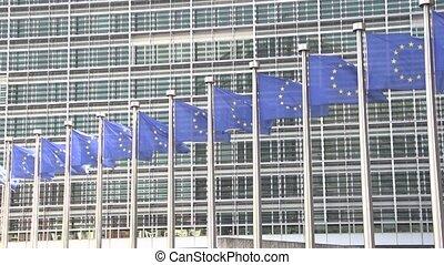 zwaaiende , motie, vertragen, vlaggen, europeaan