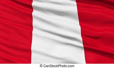 zwaaiende , nationale vlag, van, peru