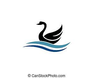 zwaan, illustratie, vector, ontwerp, mal, logo