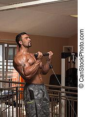 zware, biceps, bodybuilder, gewicht, oefening
