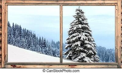zware, sneeuw, tred, wooded gebied