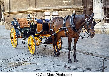 zwart paard, en, traditionele , toerist, wagen, in, sevilla
