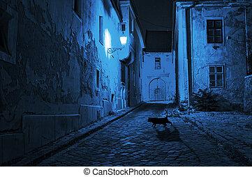 zwarte kat, kruisen, de, verlaten, straat, op de avond