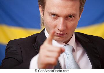 zweden, politiek