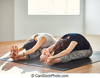 zwei, junge frauen, machen, joga, asana, gesetzt, vorwärts,...