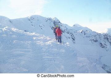 zwei leute, stehen, auf, a, berg, fahren ski zuflucht