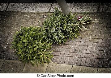 zwei, weihnachtsbäume, bürgersteig