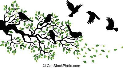 zweig, baum, silho, vogel, karikatur