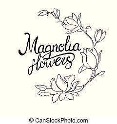 zweig, hintergrund., magnolie, blumen, webstuhl, weißes, freigestellt, set., aquarell