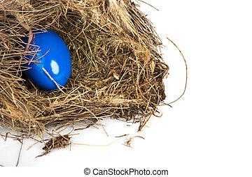 Zweige, bunte, Eier, hintergrund, weißes, Ostern,  nest
