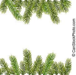 zweige, weihnachtsbaum, umrandungen