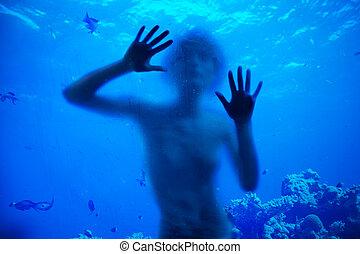 zwemmen, met, koraal